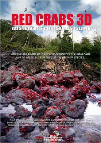 affiche red crabs